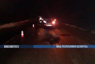В Столинском районе Hyundai насмерть сбил мужчину