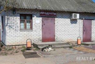 Увеличить штраф не менее чем в 10 раз. Белорусы просят ужесточить наказание за «неправильный» выгул собак