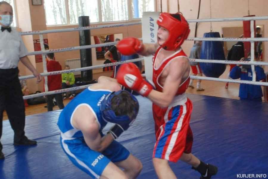 Что не так с подготовкой боксёров в Минской области