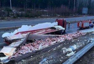 Под Бобруйском фура с говяжьими тушами попала в аварию